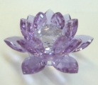 Purple Crystal Lotus